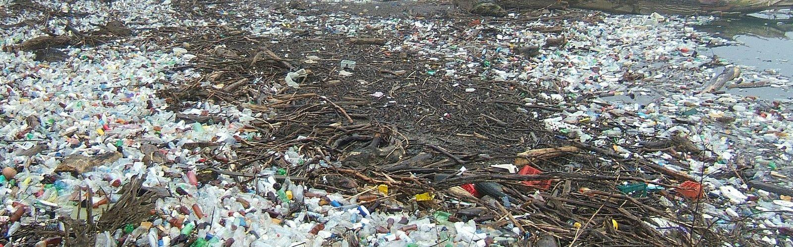 odpady kraków